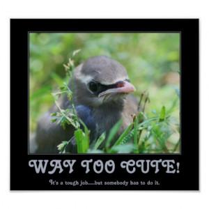 Way Too Cute Baby Bird Funny Poster