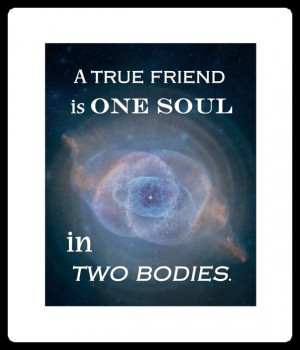 True FRIEND is Two SOULS in one BODY quote art print Aristotle