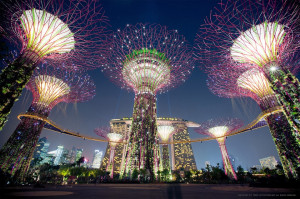 Solar powered-supertrees-singapore hd wallpapers
