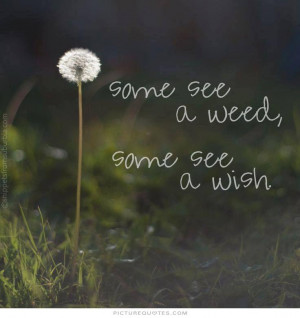 Some see a weed, some see a wish. Picture Quote #1