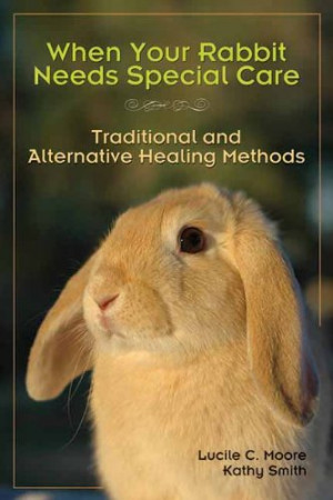 When Your Rabbit Needs Special Care: Traditional and Alternative ...