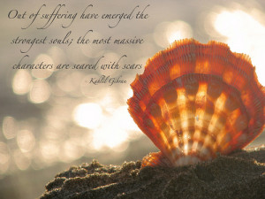 Seashell Quotes http://weheartit.com/entry/10382930