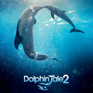 dolphin-tale-2-movie-quotes.jpg