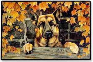 SAMSON THE GERMAN SHEPHERD GIVES THANKS FOR AN ANGEL