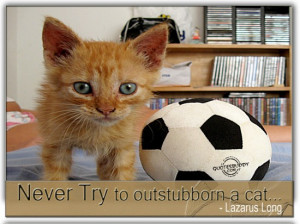 http://quotespictures.com/never-try-to-outstubborn-a-cat-lazarus-long/
