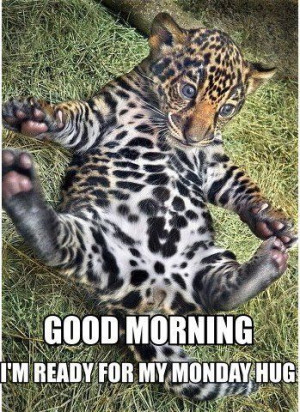 Share these and help everyone start out their Monday with a laugh, a ...