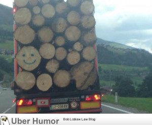 Yesterday on my way home   Funny Pictures, Quotes, Pics, Photos ...