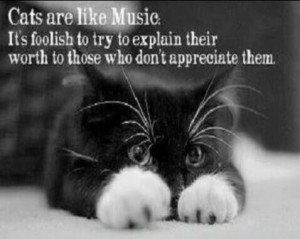 Cats are like music... It's foolish to try to explain their worth to ...