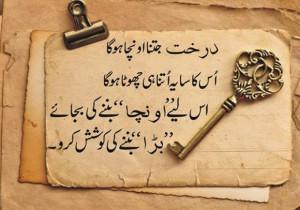 Beautiful Quote In Urdu