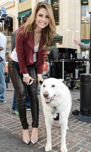 Maria Menounos Pets ( 1 )