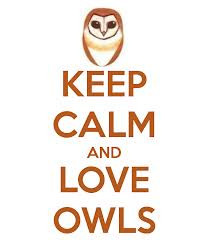 Keep calm and love owl quotes