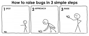 How to raise bug in 3 simple steps