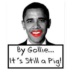 Funny Anti Obama Sayings Posters   Funny Anti Obama Sayings Prints ...