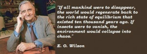 wilson famous quotes 1