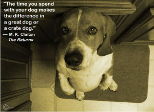 Time well spent. #Dogs #Quotes #BookQuotes