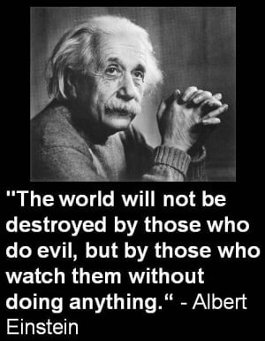 Albert Einstein Quotes (28)