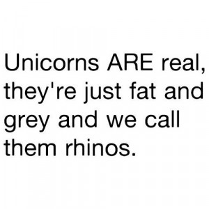 Unicorns are real (clipped to polyvore.com )