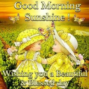 Good Morning Wishing You A Beautiful Day
