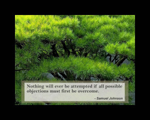 """... Objections Must First Be Overcome """" - Samuel Johnson ~ Nature Quote"""