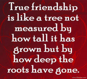 True Friendship Is Like A Tree Not Measured By How Tall It Has Grown ...