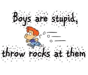 Quotes About Boys Being Stupid...