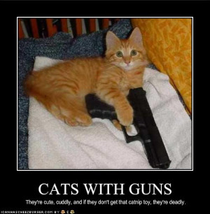 Funny Animals with Guns-2012 Most Funny Wallpapers