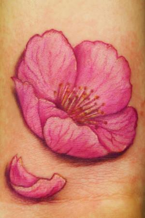Cheery Blossom Flower by Dan