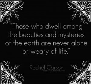 Those who dwell among the beauties and mysteries of the earth are ...