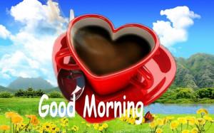 Good Morning Everyone Image