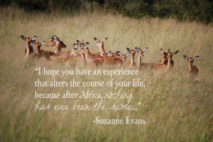 tell us your favorite travel quote or quote about africa on our ...