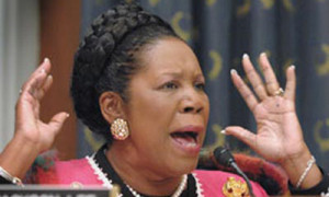 Sheila Jackson Lee gets offered matches after vowing to set herself on ...