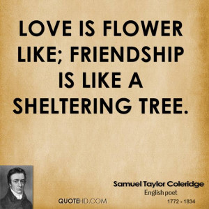 Friendship Quotes Like a Flower