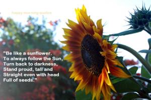 Be like a Sunflower!