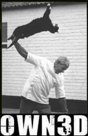 http://i288.photobucket.com/albums/l...d-CatThrow.jpg