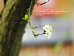 Love Nature Quote