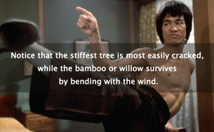 ... Bruce Lee Quotes Read this One! (Includes 20 Pictures of Bruce's