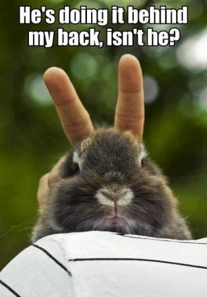 Cutest animal picture with quotes ever.