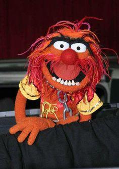 ... animal muppets favorite muppet3 animal voice animal mad things animal