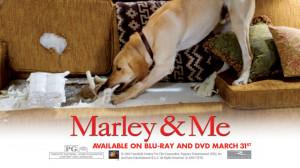 Marley-and-Me-marley-and-me-5315811-1024-576.jpg