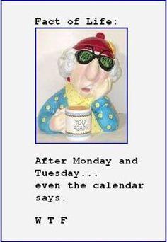 Maxine Quotes | Fact of Life : Courtesy of Maxine | Shibley Smiles ...