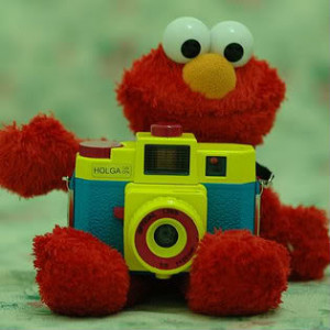 At an Cute Elmo Quotes low price from every day, but Cute Elmo Quotes ...