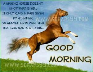 winning horse doesnt