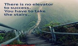 ... . You Have To Take The Stairs Quote - Stairway To Heaven In Hawaii