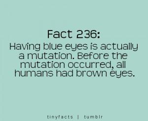 Having Blue Eyes…