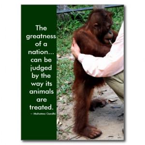 Mahatma Gandhi's animal quote Post Cards