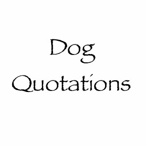 dogquotations.comdog-quotations-fb.png
