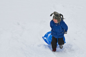 Playing_in_the_snow 1