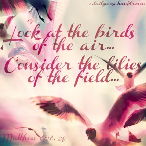 Look at the birds of the air … . Consider the lilies of the field ...