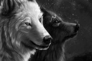 wolf art spirit mythical black pack the quotes white timber lone canis ...