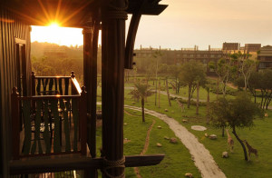 Disney World Animal Kingdom Villas